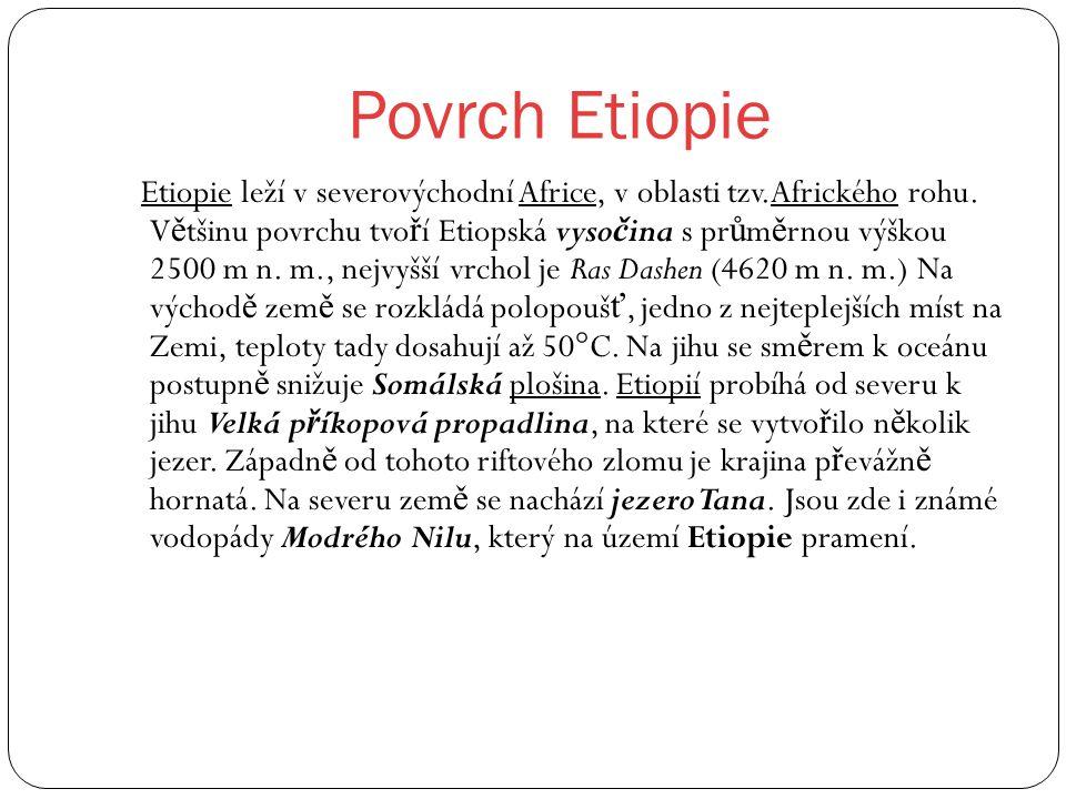 Povrch Etiopie Etiopie leží v severovýchodní Africe, v oblasti tzv.Afrického rohu. V ě tšinu povrchu tvo ř í Etiopská vyso č ina s pr ů m ě rnou výško