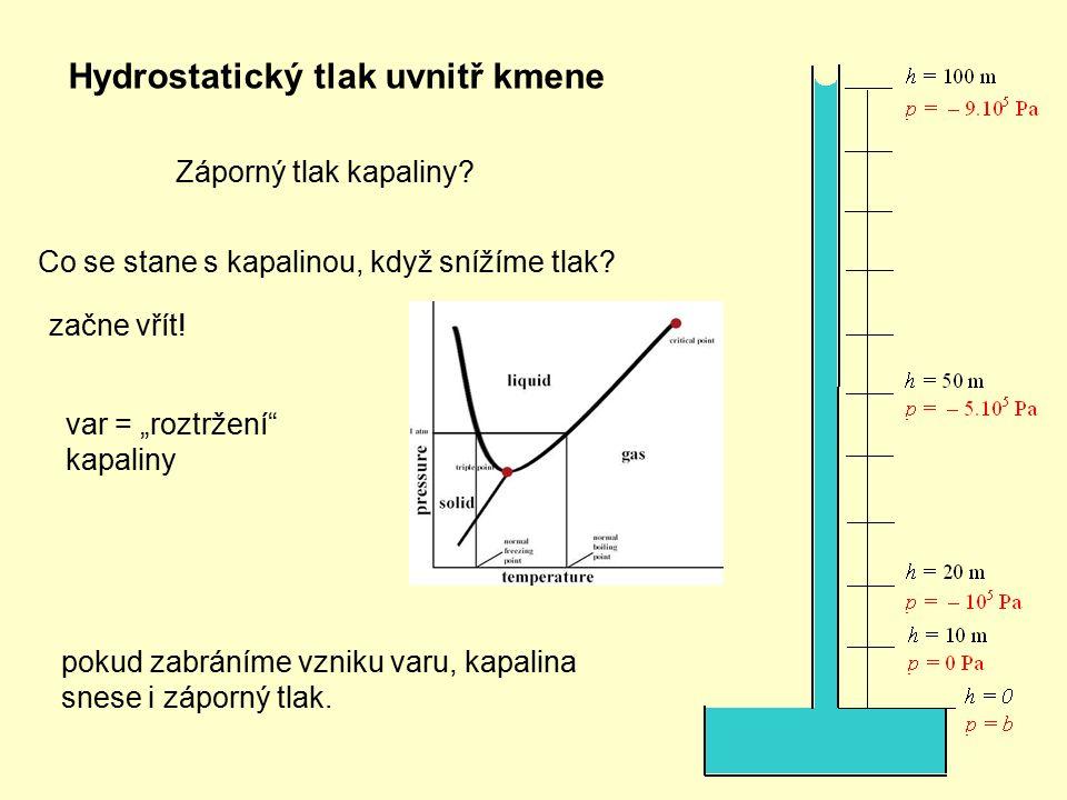 """Hydrostatický tlak uvnitř kmene Záporný tlak kapaliny? Co se stane s kapalinou, když snížíme tlak? začne vřít! var = """"roztržení"""" kapaliny pokud zabrán"""