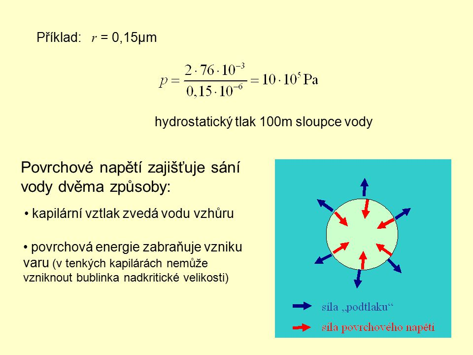 Příklad: r = 0,15μm hydrostatický tlak 100m sloupce vody Povrchové napětí zajišťuje sání vody dvěma způsoby: kapilární vztlak zvedá vodu vzhůru povrch