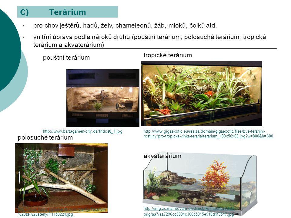 -pro chov ještěrů, hadů, želv, chameleonů, žáb, mloků, čolků atd. -vnitřní úprava podle nároků druhu (pouštní terárium, polosuché terárium, tropické t