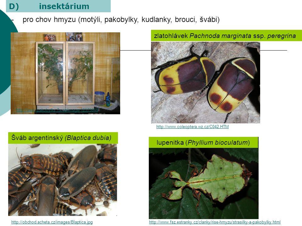 -pro chov hmyzu (motýli, pakobylky, kudlanky, brouci, švábi) http://obchod.acheta.cz/images/Blaptica.jpghttp://www.fsz.estranky.cz/clanky/rise-hmyzu/s