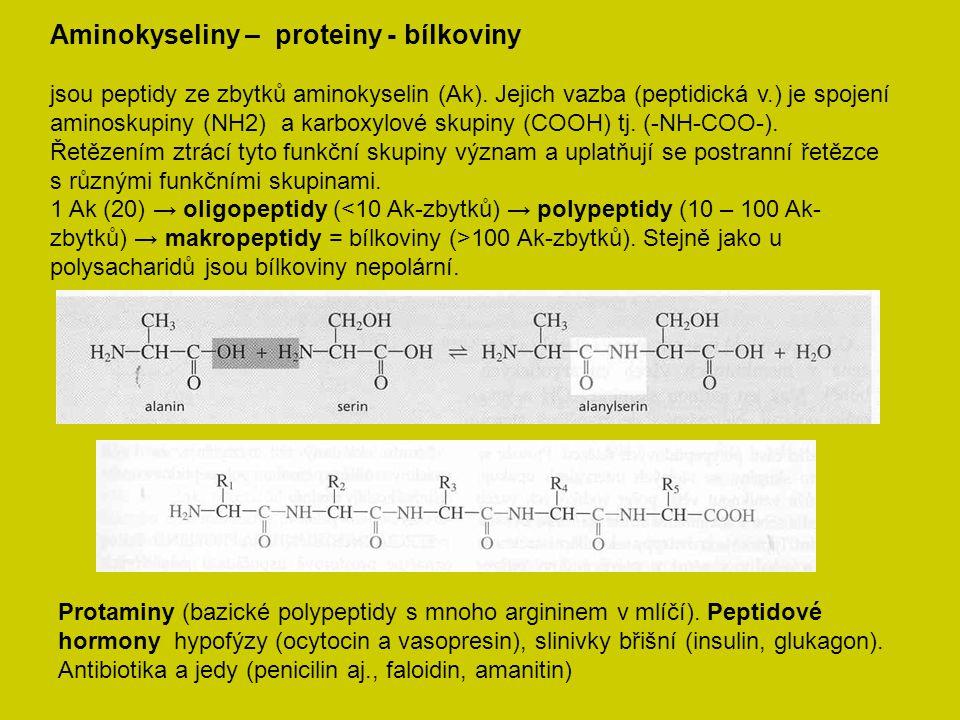 Aminokyseliny – proteiny - bílkoviny jsou peptidy ze zbytků aminokyselin (Ak). Jejich vazba (peptidická v.) je spojení aminoskupiny (NH2) a karboxylov