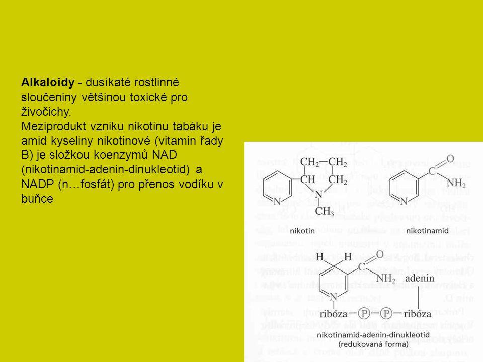 Alkaloidy - dusíkaté rostlinné sloučeniny většinou toxické pro živočichy. Meziprodukt vzniku nikotinu tabáku je amid kyseliny nikotinové (vitamin řady