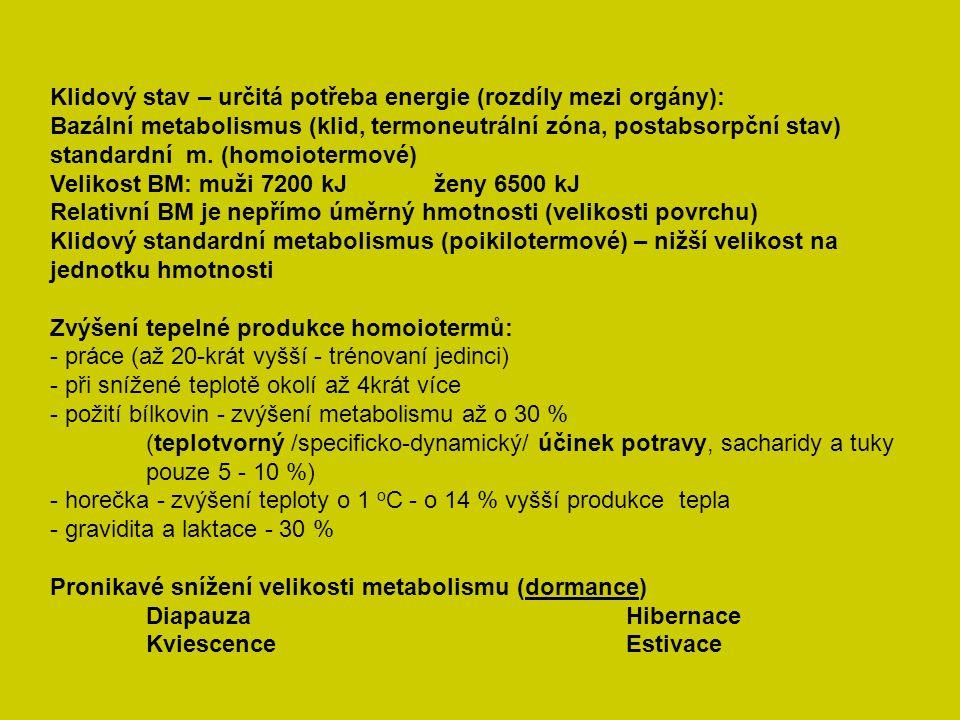 Klidový stav – určitá potřeba energie (rozdíly mezi orgány): Bazální metabolismus (klid, termoneutrální zóna, postabsorpční stav) standardní m. (homoi