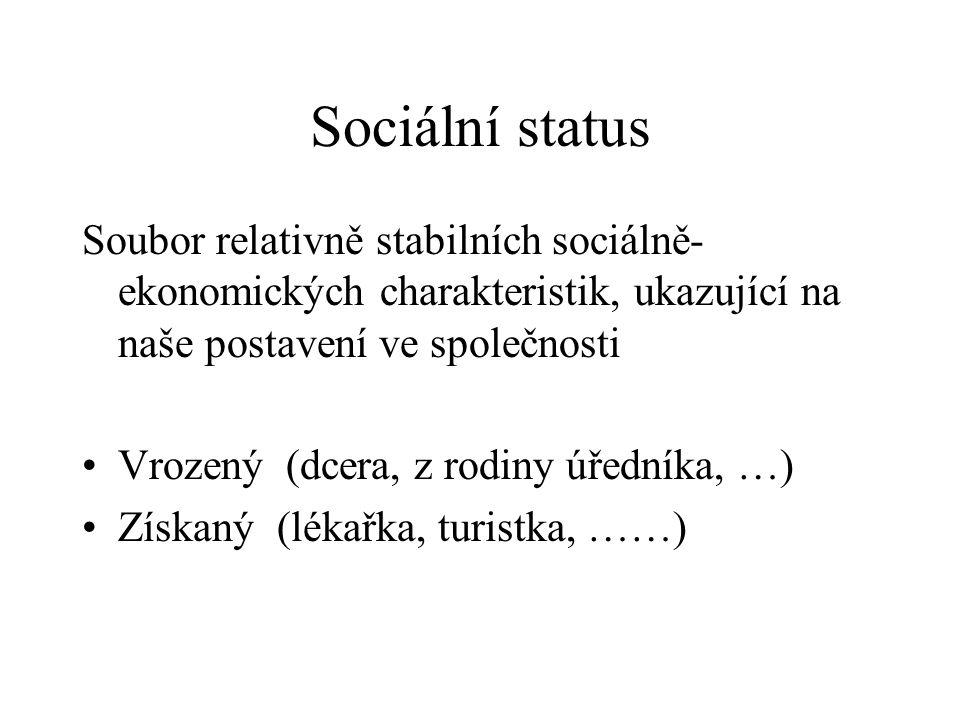 Sociální status Soubor relativně stabilních sociálně- ekonomických charakteristik, ukazující na naše postavení ve společnosti Vrozený (dcera, z rodiny