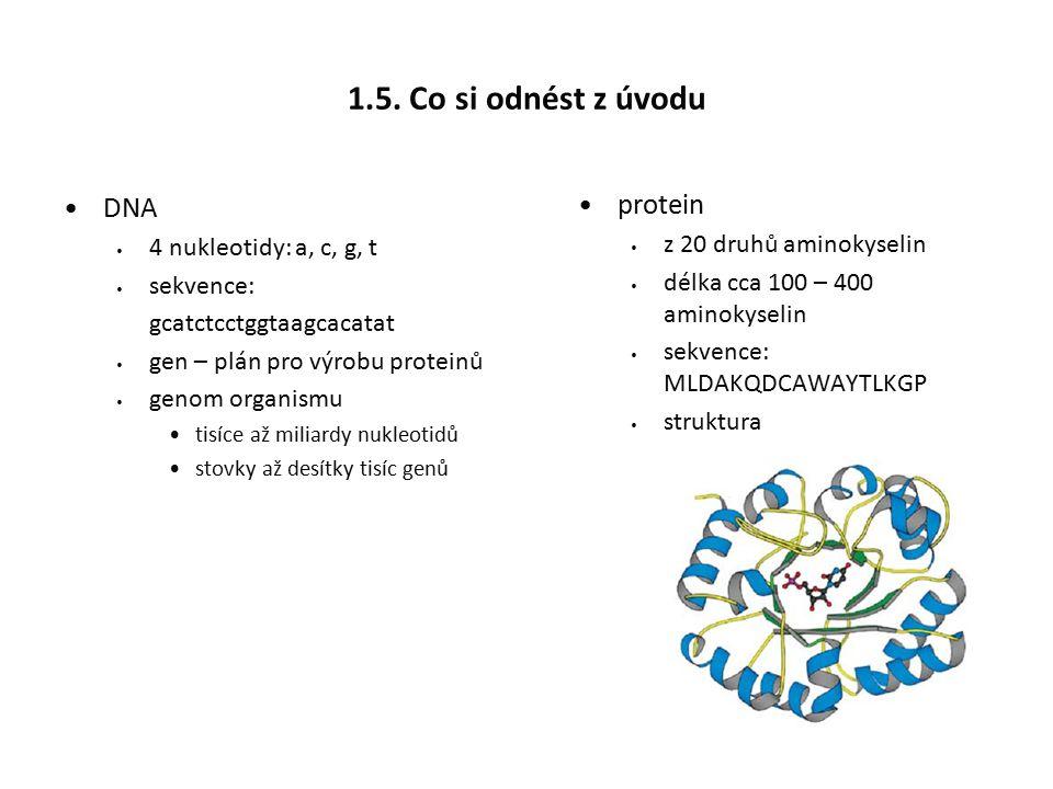 1.5. Co si odnést z úvodu DNA 4 nukleotidy: a, c, g, t sekvence: gcatctcctggtaagcacatat gen – plán pro výrobu proteinů genom organismu tisíce až milia