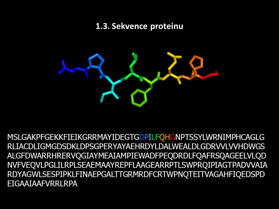 1.3. Sekvence proteinu MSLGAKPFGEKKFIEIKGRRMAYIDEGTGDPILFQHGNPTSSYLWRNIMPHCAGLG RLIACDLIGMGDSDKLDPSGPERYAYAEHRDYLDALWEALDLGDRVVLVVHDWGS ALGFDWARRHRERV