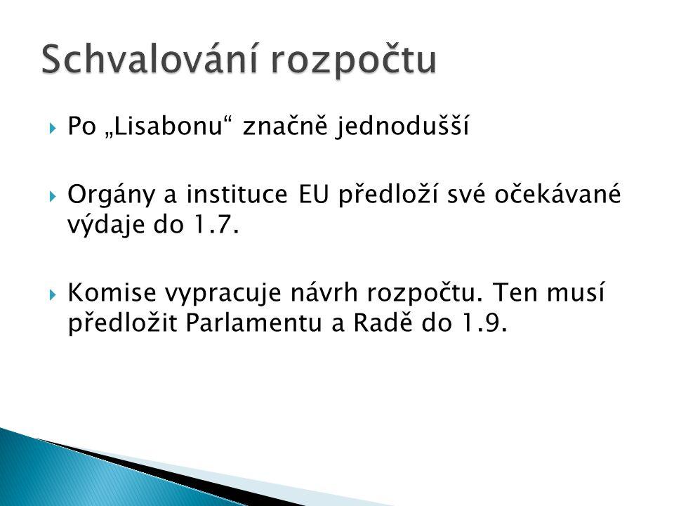 """ Po """"Lisabonu"""" značně jednodušší  Orgány a instituce EU předloží své očekávané výdaje do 1.7.  Komise vypracuje návrh rozpočtu. Ten musí předložit"""