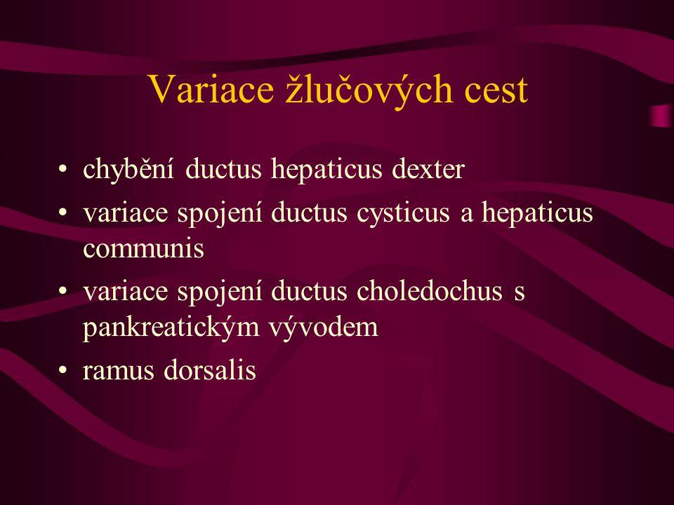 Variace žlučových cest chybění ductus hepaticus dexter variace spojení ductus cysticus a hepaticus communis variace spojení ductus choledochus s pankr