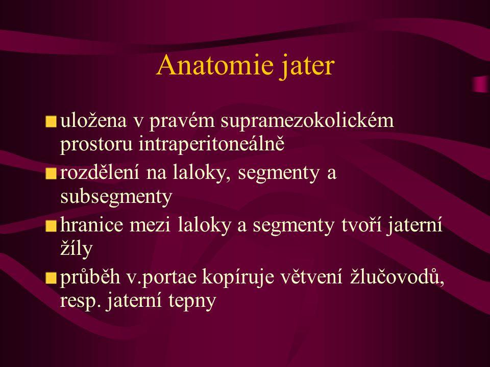 Anatomie jater uložena v pravém supramezokolickém prostoru intraperitoneálně rozdělení na laloky, segmenty a subsegmenty hranice mezi laloky a segment