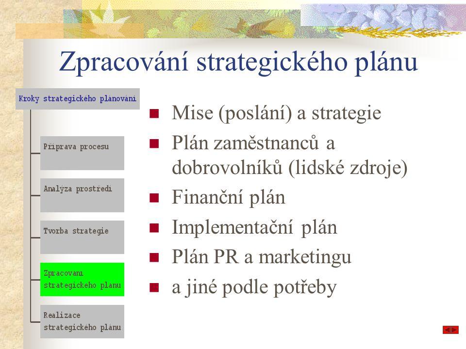 Zpracování strategického plánu Mise (poslání) a strategie Plán zaměstnanců a dobrovolníků (lidské zdroje) Finanční plán Implementační plán Plán PR a marketingu a jiné podle potřeby
