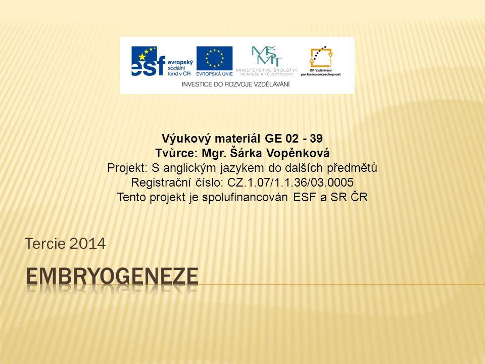 Tercie 2014 Výukový materiál GE 02 - 39 Tvůrce: Mgr. Šárka Vopěnková Projekt: S anglickým jazykem do dalších předmětů Registrační číslo: CZ.1.07/1.1.3