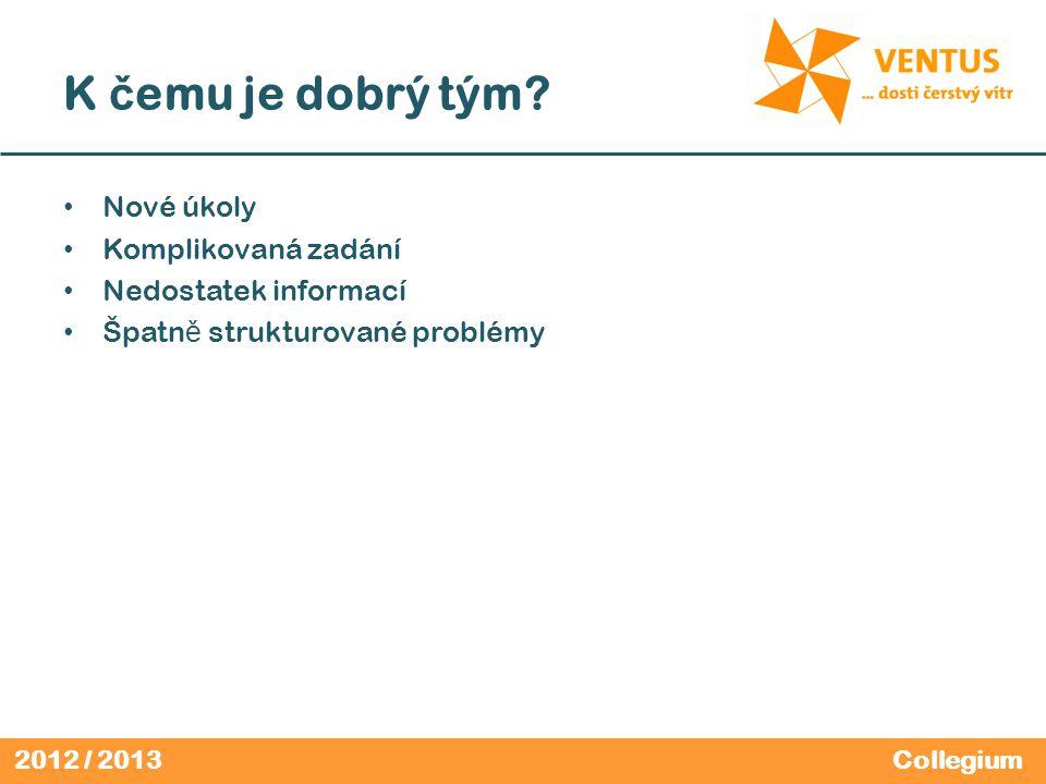 2012 / 2013 K č emu je dobrý tým.