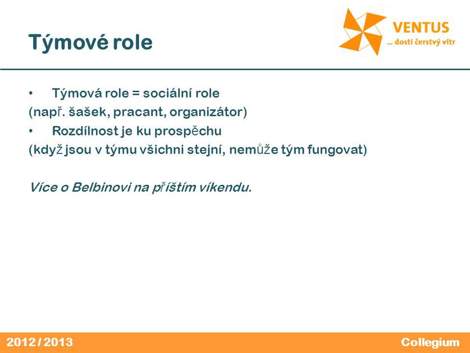 2012 / 2013 Týmové role Týmová role = sociální role (nap ř. šašek, pracant, organizátor) Rozdílnost je ku prosp ě chu (kdy ž jsou v týmu všichni stejn