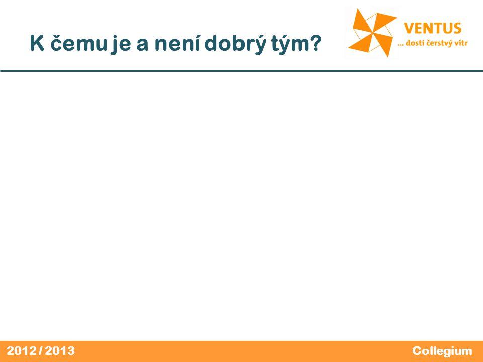 2012 / 2013 K č emu je a není dobrý tým Collegium