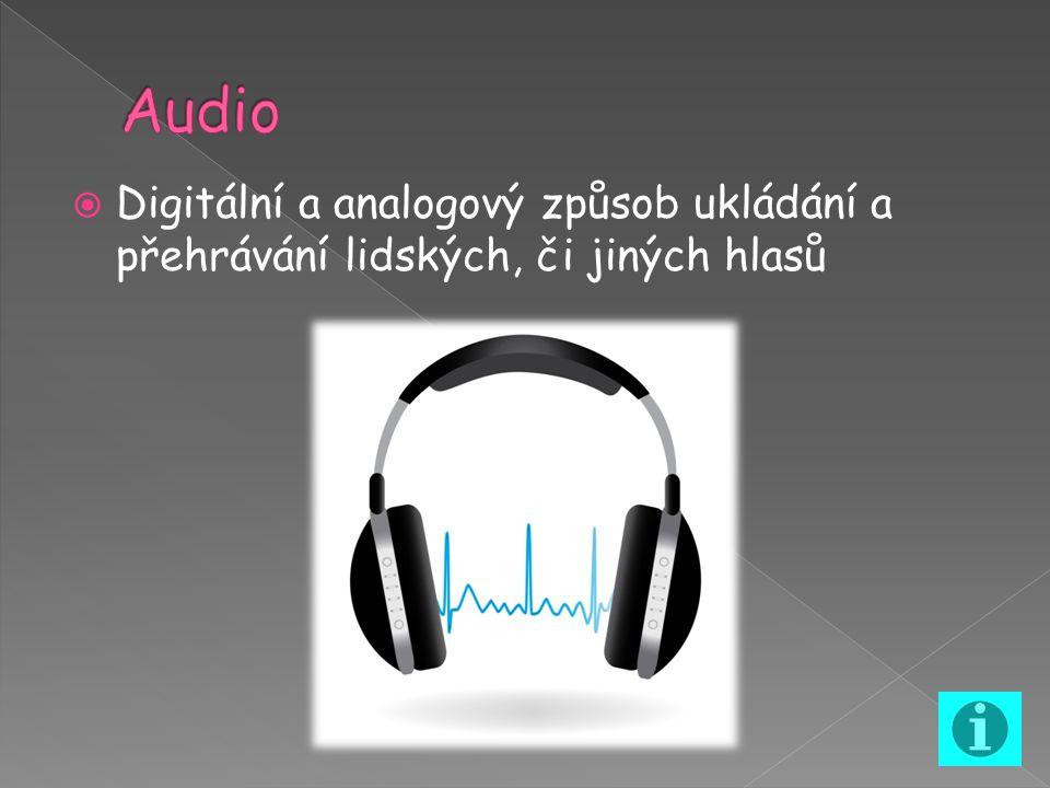  Digitální a analogový způsob ukládání a přehrávání lidských, či jiných hlasů