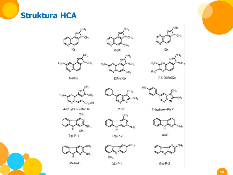 Struktura HCA 50