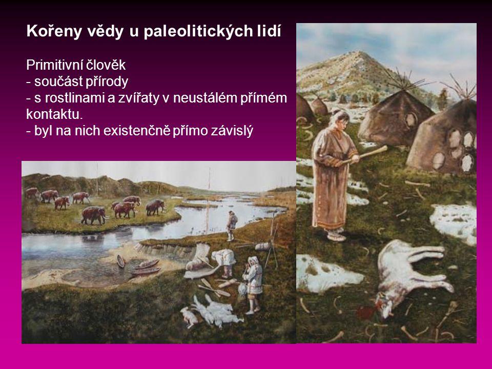 Kořeny vědy u paleolitických lidí Primitivní člověk - součást přírody - s rostlinami a zvířaty v neustálém přímém kontaktu.