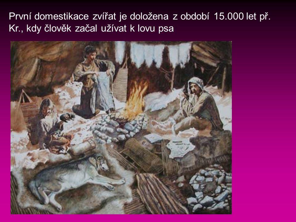 První domestikace zvířat je doložena z období 15.000 let př.