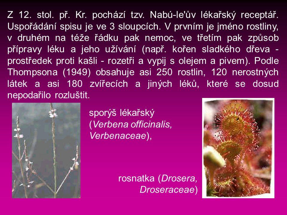 Z 12.stol. př. Kr. pochází tzv. Nabú-le ův lékařský receptář.