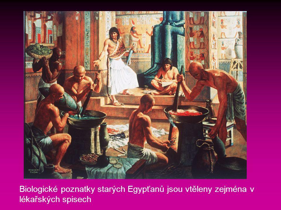 Biologické poznatky starých Egypťanů jsou vtěleny zejména v lékařských spisech