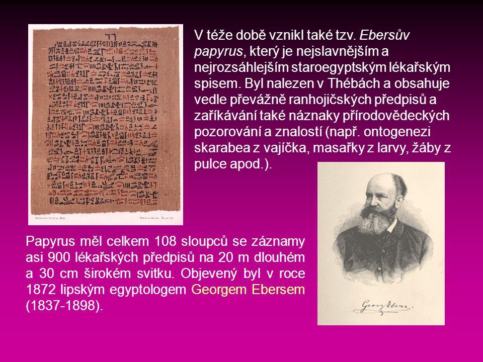Papyrus měl celkem 108 sloupců se záznamy asi 900 lékařských předpisů na 20 m dlouhém a 30 cm širokém svitku.