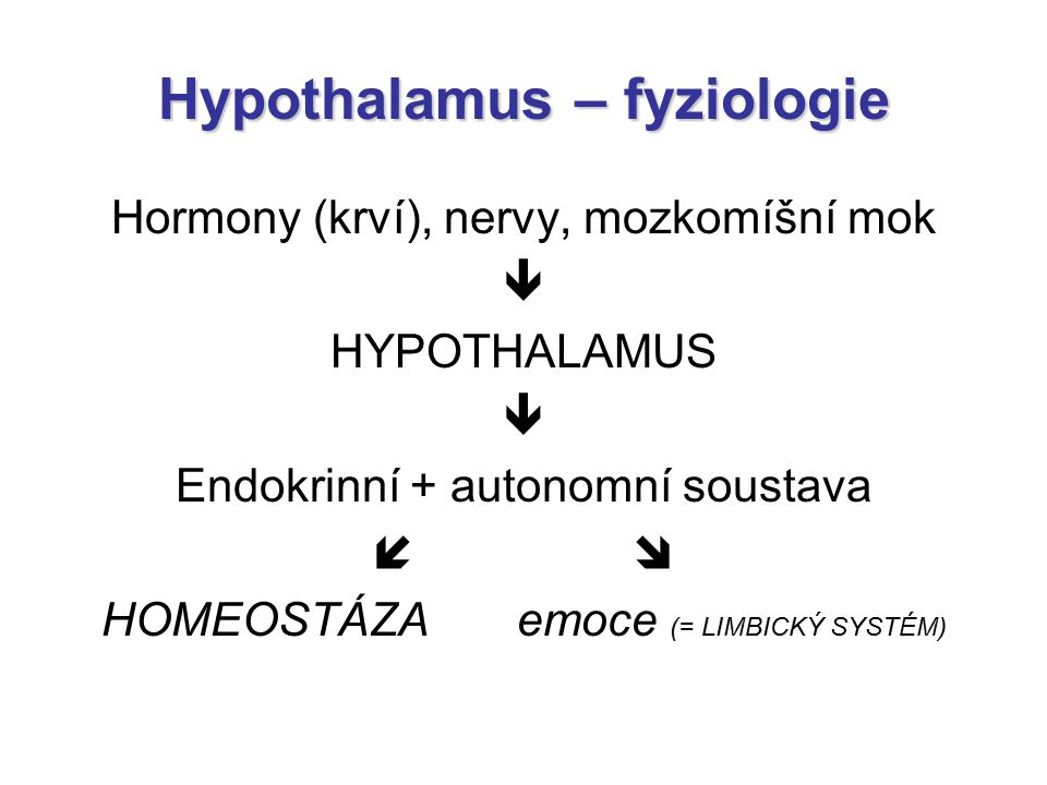 Hypothalamus – fyziologie Hormony (krví), nervy, mozkomíšní mok  HYPOTHALAMUS  Endokrinní + autonomní soustava   HOMEOSTÁZA emoce (= LIMBICKÝ SYST