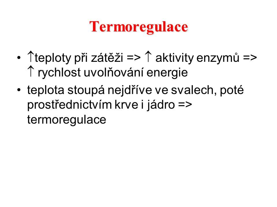  teploty při zátěži =>  aktivity enzymů =>  rychlost uvolňování energie teplota stoupá nejdříve ve svalech, poté prostřednictvím krve i jádro => te