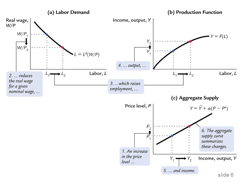 slide 37 Hystereze: Proč mohou negativní šoky zvýšit přirozenou míru  Schopnosti cyklicky nezaměstnaných pracovníků se mohou ztrácet během jejich nezaměstnanosti a po skončení recese již nemusí být schopni najít práci.