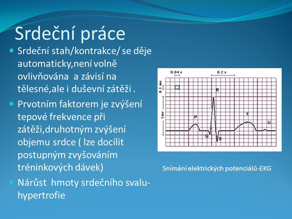 Srdeční práce Srdeční stah/kontrakce/ se děje automaticky,není volně ovlivňována a závisí na tělesné,ale i duševní zátěži.
