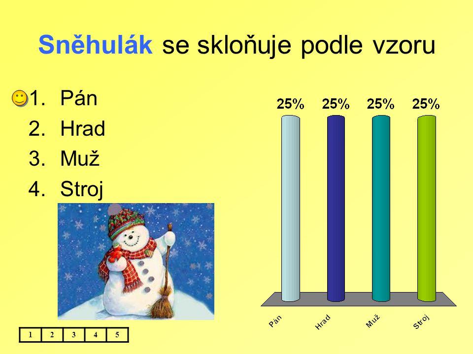Sněhulák se skloňuje podle vzoru 12345 1.Pán 2.Hrad 3.Muž 4.Stroj