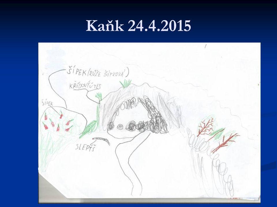 Kaňk 24.4.2015