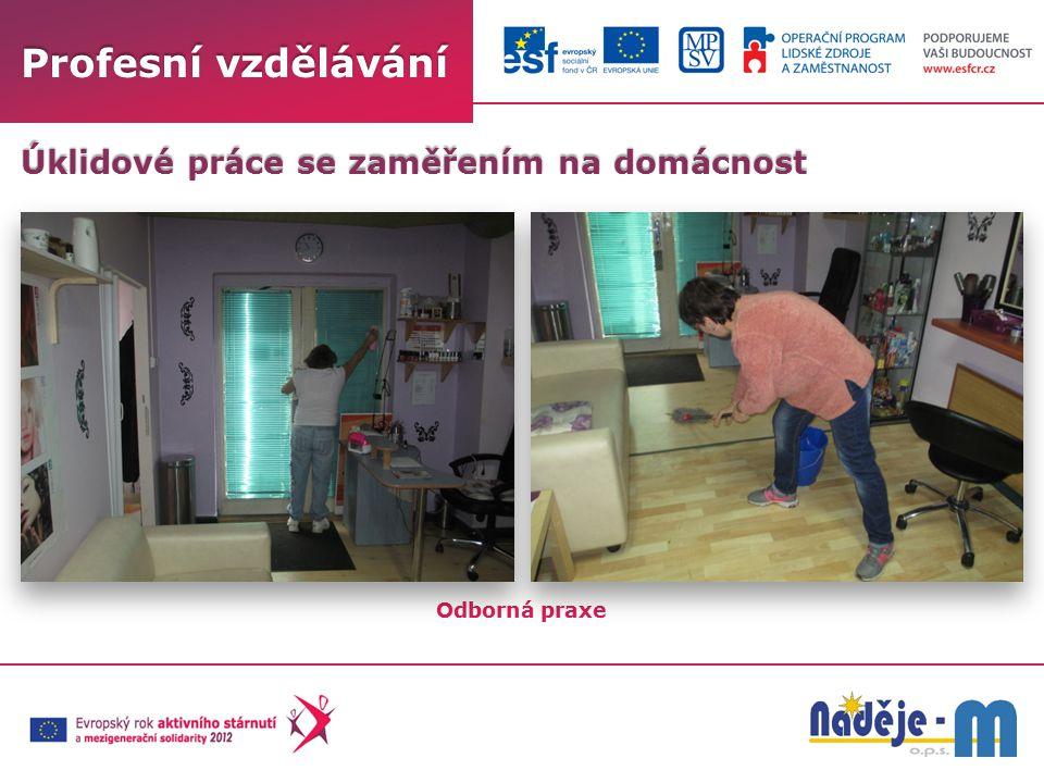 Profesní vzdělávání Odborná praxe Úklidové práce se zaměřením na domácnost