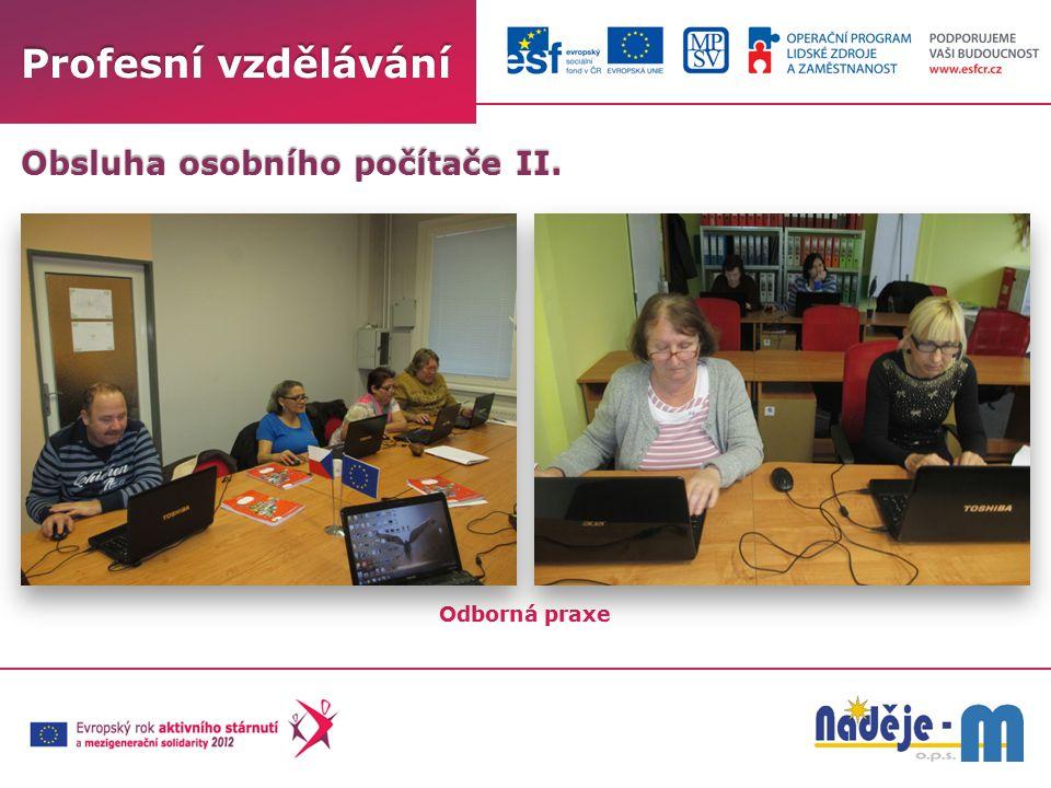 Profesní vzdělávání Odborná praxe Obsluha osobního počítače II.