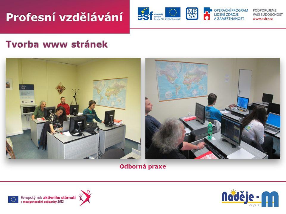Profesní vzdělávání Tvorba www stránek Odborná praxe