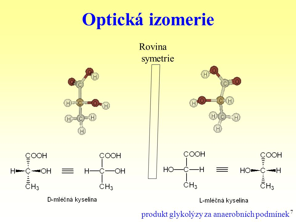 48 Pyrrolidin