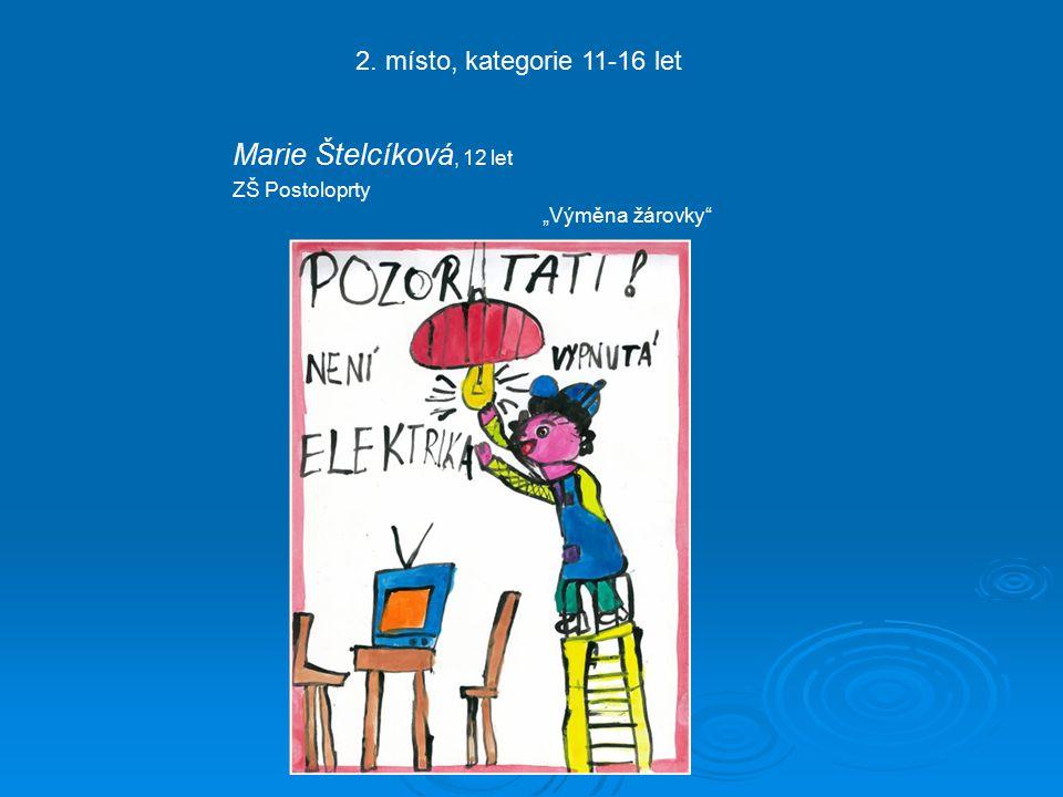 """Marie Štelcíková, 12 let ZŠ Postoloprty 2. místo, kategorie 11-16 let """"Výměna žárovky"""
