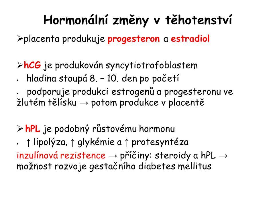 Hormonální změny v těhotenství  placenta produkuje progesteron a estradiol  hCG je produkován syncytiotrofoblastem ● hladina stoupá 8. – 10. den po