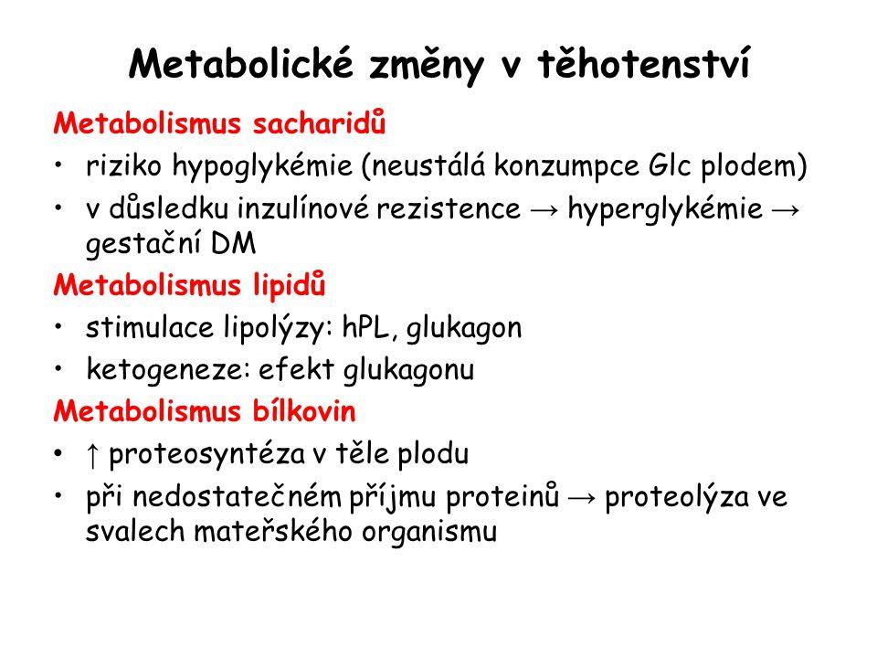 Metabolické změny v těhotenství Metabolismus sacharidů riziko hypoglykémie (neustálá konzumpce Glc plodem) v důsledku inzulínové rezistence → hypergly