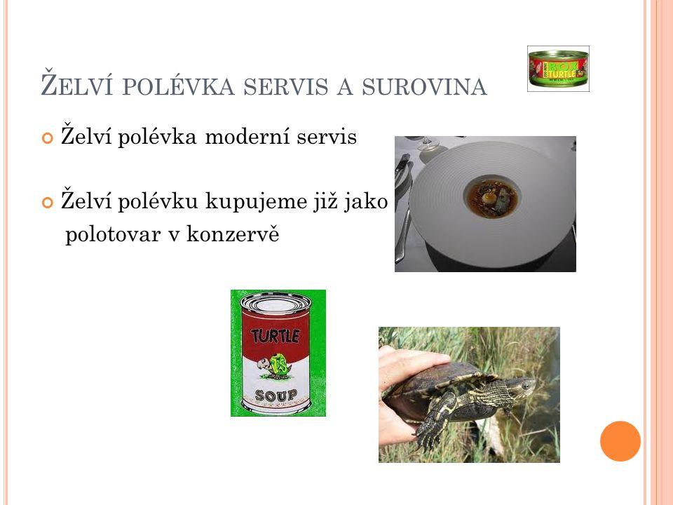 Ž ELVÍ POLÉVKA SERVIS A SUROVINA Želví polévka moderní servis Želví polévku kupujeme již jako polotovar v konzervě
