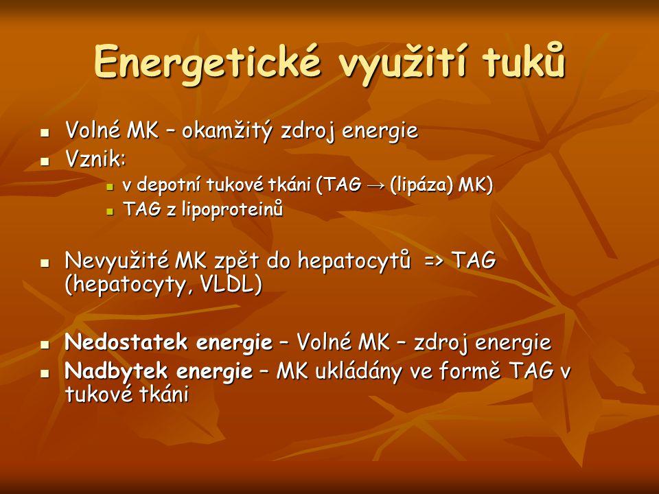 Energetické využití tuků Volné MK – okamžitý zdroj energie Volné MK – okamžitý zdroj energie Vznik: Vznik: v depotní tukové tkáni (TAG → (lipáza) MK)