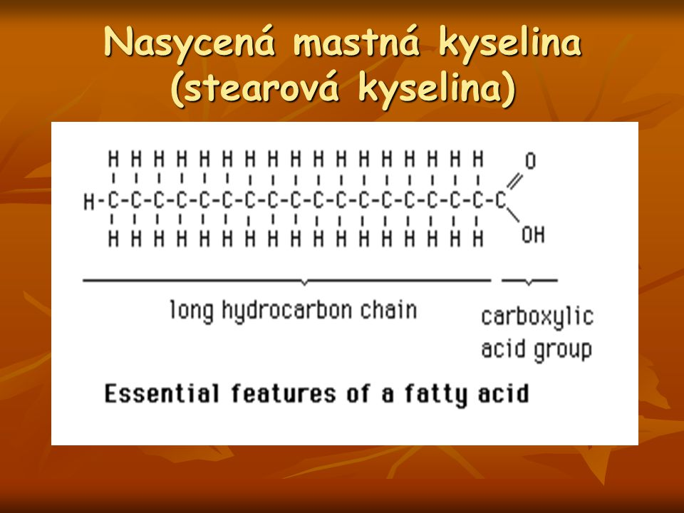 Nasycená mastná kyselina (stearová kyselina)