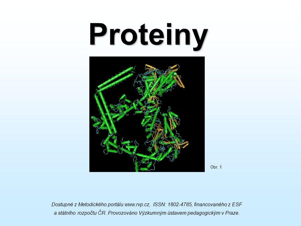 Proteiny Dostupné z Metodického portálu www.rvp.cz, ISSN: 1802-4785, financovaného z ESF a státního rozpočtu ČR. Provozováno Výzkumným ústavem pedagog