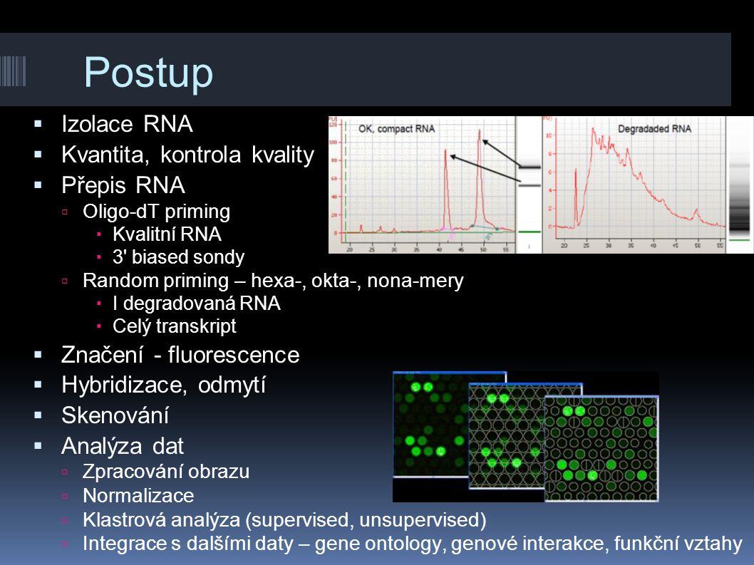 Postup  Izolace RNA  Kvantita, kontrola kvality  Přepis RNA  Oligo-dT priming  Kvalitní RNA  3' biased sondy  Random priming – hexa-, okta-, no