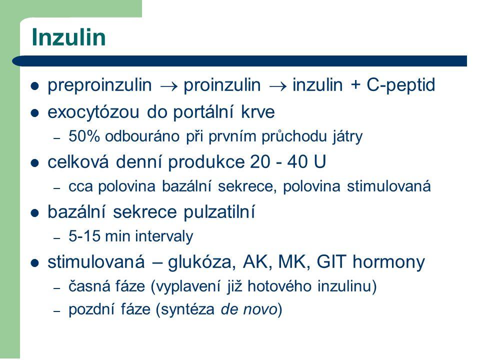 Inzulin preproinzulin  proinzulin  inzulin + C-peptid exocytózou do portální krve – 50% odbouráno při prvním průchodu játry celková denní produkce 2