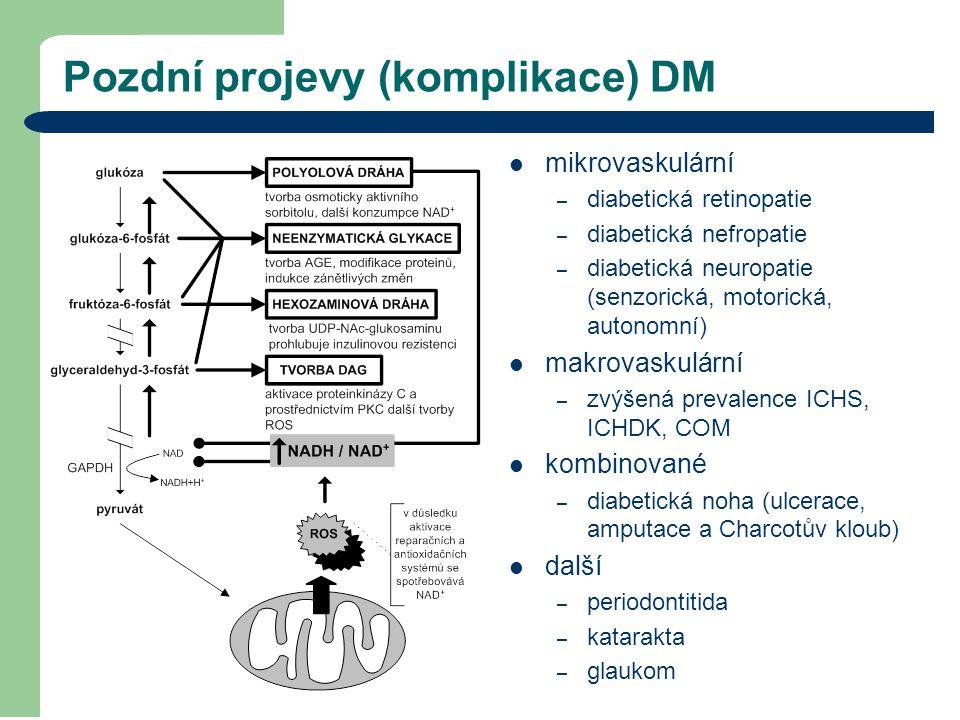Pozdní projevy (komplikace) DM mikrovaskulární – diabetická retinopatie – diabetická nefropatie – diabetická neuropatie (senzorická, motorická, autono
