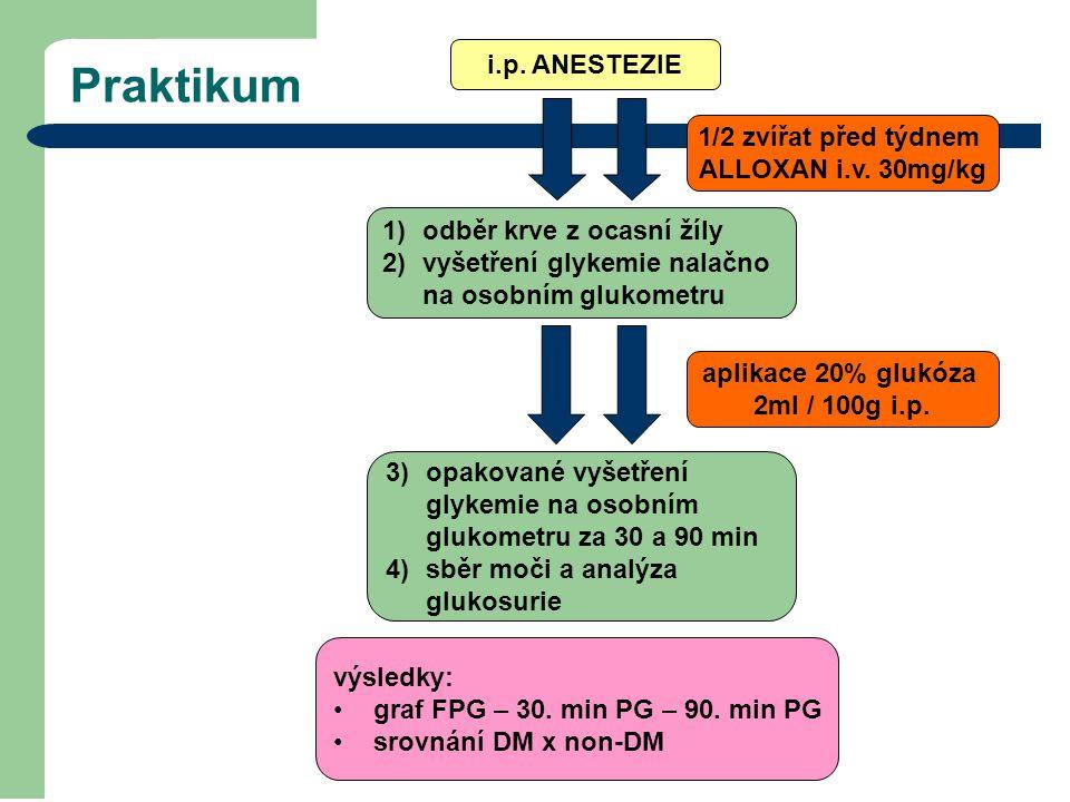 Praktikum i.p. ANESTEZIE 3)opakované vyšetření glykemie na osobním glukometru za 30 a 90 min 4)sběr moči a analýza glukosurie 1/2 zvířat před týdnem A