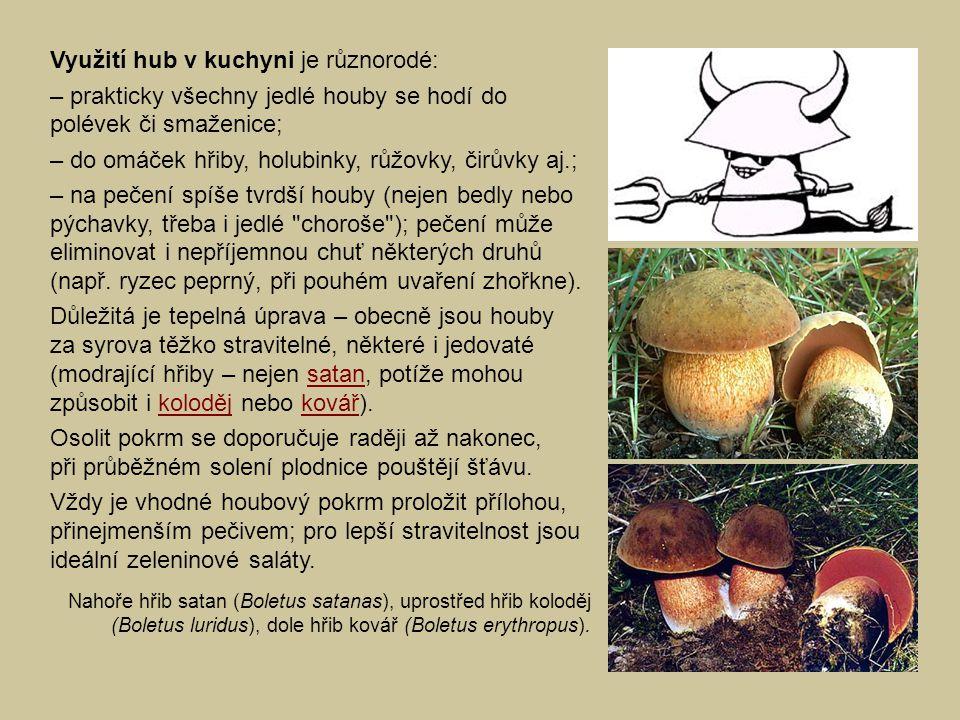 Využití hub v kuchyni je různorodé: – prakticky všechny jedlé houby se hodí do polévek či smaženice; – do omáček hřiby, holubinky, růžovky, čirůvky aj
