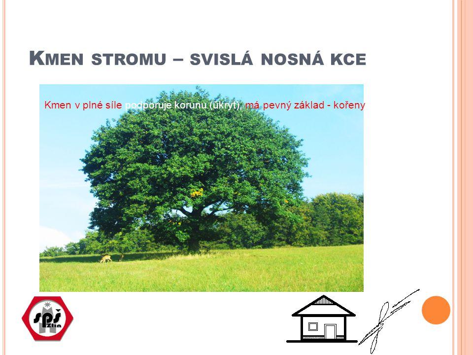 K MEN STROMU – SVISLÁ NOSNÁ KCE Kmen v plné síle podporuje korunu (úkryt), má pevný základ - kořeny