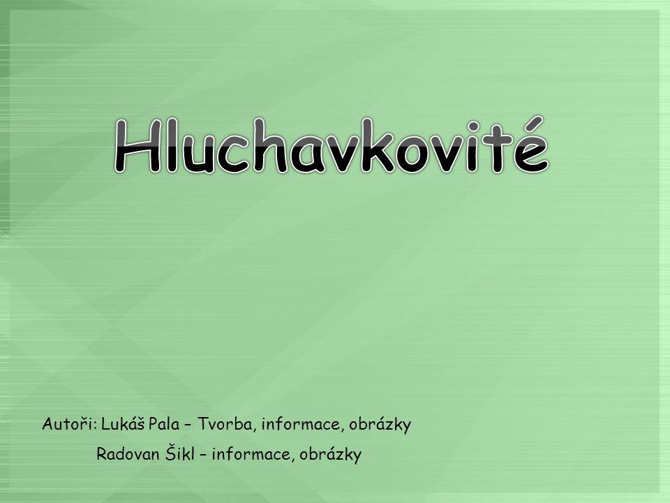 Autoři: Lukáš Pala – Tvorba, informace, obrázky Radovan Šikl – informace, obrázky